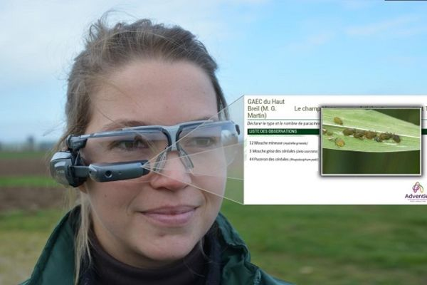 Salon de l'agriculture : des lunettes intelligentes pour ausculter ...