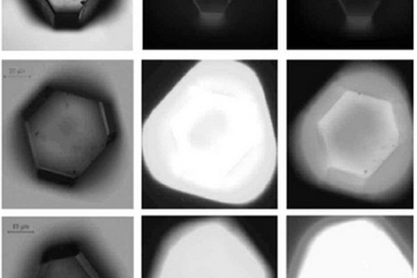 Diamlite veut révolutionner le diagnostic clinique avec ses nanodiamants fluorescents