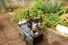 Comme la chauve-souris, ce robot appréhende son environnement grâce aux ultrasons