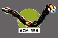 ACM-R5H
