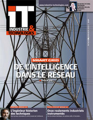 IT N°929 - Janvier 2011