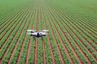 Etats généraux de l'alimentation : ces 5 technos qui révolutionnent l'agriculture